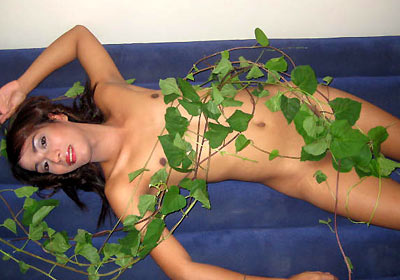 Kinky ladyboys who love chatting live.